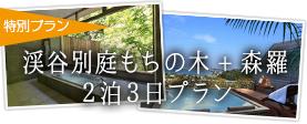 特別プラン 渓谷別邸もちの木+森羅 2泊3日プラン